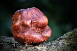 De Yogi Man of Orang Malu